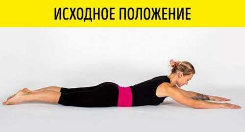 упражнение лев